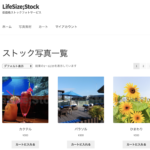 LifeSize;Stock